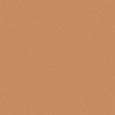 Metal Roof Color Options: Copper Metallic