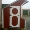 Chicken Coop 4